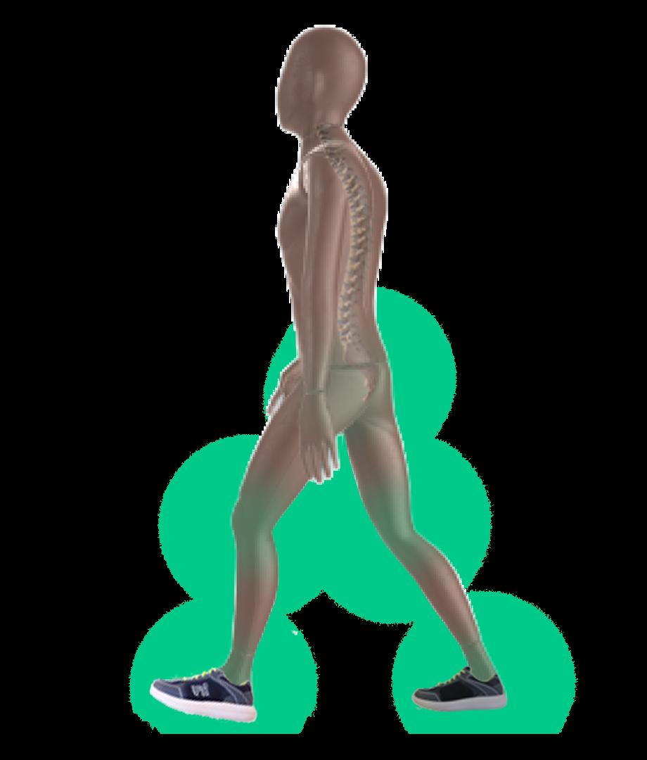 Arthrose Walk